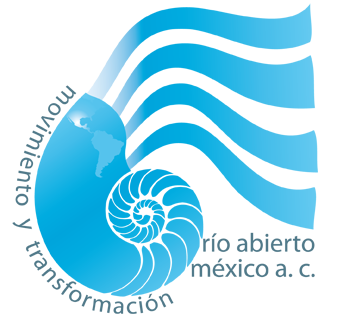 cropped-cropped-logo_rioabierto.png
